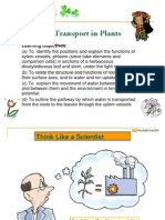 Chapter9TransportinPlants (2)