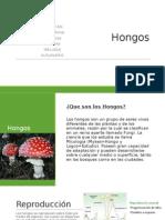 microbiologia.pptx
