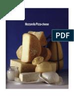 ELABORACION DE QUESO MOZZARELLA PARA PIZZAS.pdf