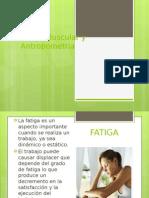 Fatiga Muscular y Antropometría