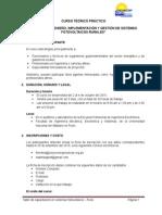 Resumen Curso SFV Puno 2015