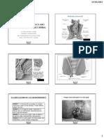 Diapo Patolog Qx Anorectal Deparedabdominal