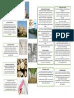 Interpretaciones de La Arquitectura 1