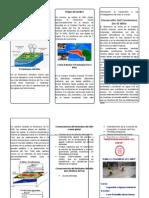 tripticofenomenodelnio-131028072744-phpapp02