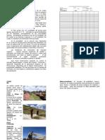 Manual Tecnico Cultivo de Quinua Organica