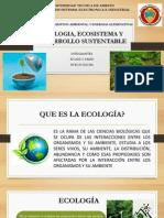 Ecologia Ecosistema y Desarrollo sostenible y Sustentable
