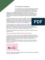 Exercícios de Respiração Abdominal e Diafragmática