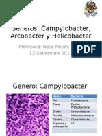 Clase 6-2°cap Campylobacter, Arcobacter y Helicobacter (1)