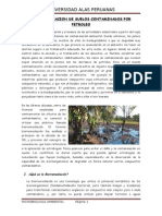 Biorremediacion de Suelos Contaminados Por Petroleo