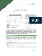 Tipeo-Aminoglicósidos