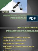 2 Principios y Garantias Procesales
