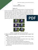 Resume materi BAB 3 Image Processing