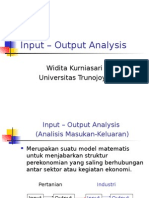 Input Output analisis