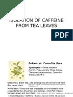 88597771 Caffeine PostLab Ch 205