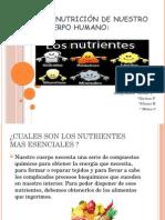 La Nutrición de Nuestro Cuerpo Humano 1ERO B