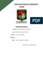 Informe de Bodega Camilo Valdivia