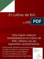 El Cultivo de Kiri