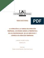 La Atención a La Familia en Atención Temprana. Un Estudio Desde La Perspectiva de Los Profesionales de Los Servicios y Centros de Atención Temprana.