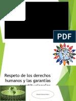 respetodelosderechoshumanosylasgarantas-130912123353-phpapp02