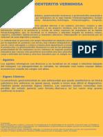 GASTROENTERITIS VERMINOSA.pptx