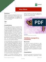 Virus Del Ebola A
