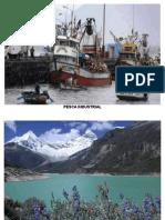 Pesca Industrial