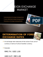 CH4_Determination of Foreign Exchange Rates