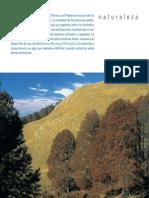 Pirineo Aragones Castellano