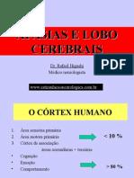 afasiaeloboscerebrais-110210043624-phpapp01