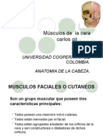 grupomusculosfaciales2-130224203048-phpapp01.ppt