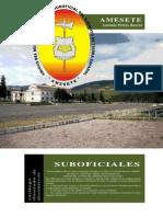 AMESETE.-Emblemas-y-distintivos.-Suboficiales.-Actualización-2010.-Para-web.pdf