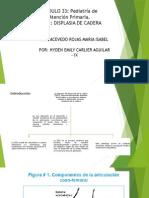 Displasia de Cadera - Cahydene
