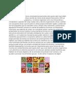 Generalidades Bacterias[2]