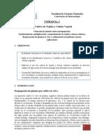 Unidad_02_Guia_#1_Cultivo in vitro Vegetal (5).pdf