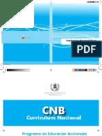 CNB de Primaria Acelerada.pdf