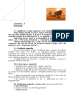 CAP 3 pluguri edit.pdf