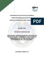 Adaptacion y Reproduccion en Cautiverio de Peces Nativos Con Potencial Ornamental