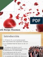 Expo Anemia Ferropenica