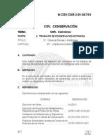N-CSV-CAR-2-01-007-01.pdf