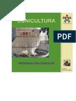 Cunicultura 6 - Reproducción Cunícolas