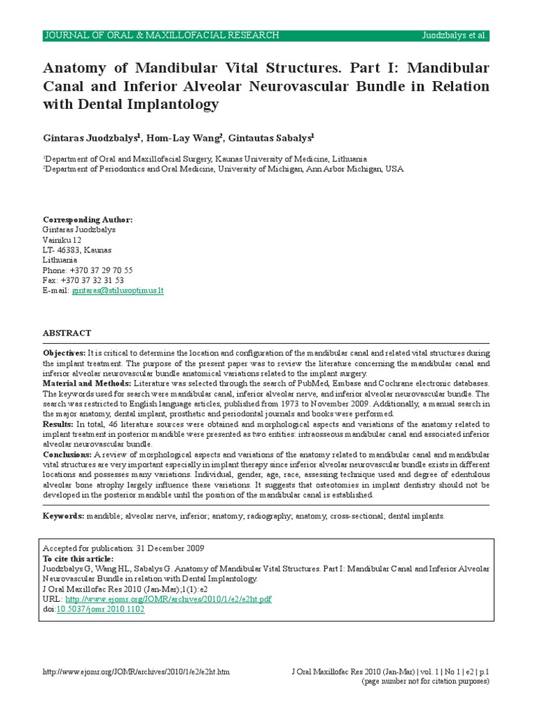 Anatomy of Mandibular Vital Structures   Anatomical Terms Of ...
