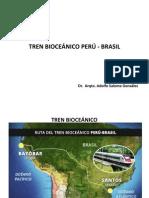10.- Tren bioceánico (1)