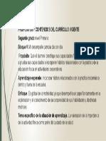 1. Propósitos y Contenidos Del Curriculum Vigente