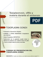 Toxoplasmosis, Sífilis y Malaria Durante El Embarazo
