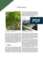 Noz de areca.pdf