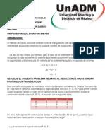 Evidencia de Aprendizaje Uni 3 Determinantes