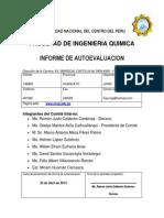 Fiq Uncp Proceso.autoevaluacion.2013