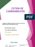 Carbohidratos y Glucogenogenesis