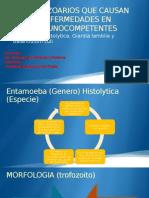 3.- Protozoarios Que Causan Enfermedades en Inmunocompetentes
