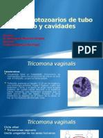 6.-Otros Protozoarios de Tubo Digestivo y Cavidades
